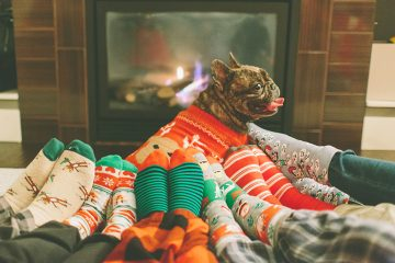 Holiday deals on gifts for your pets